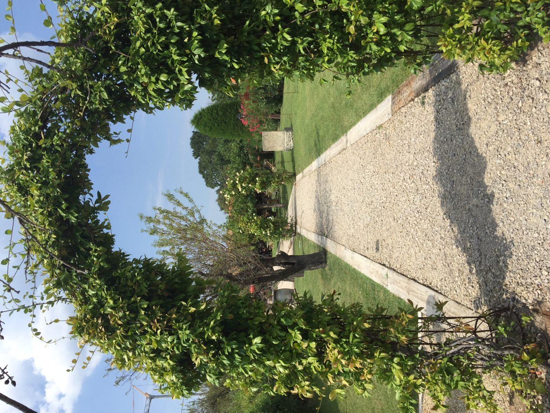 Notre périple dans les Alpilles en Provence